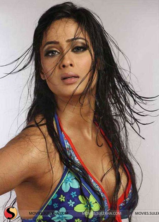 Sexy images of sweta tiwari